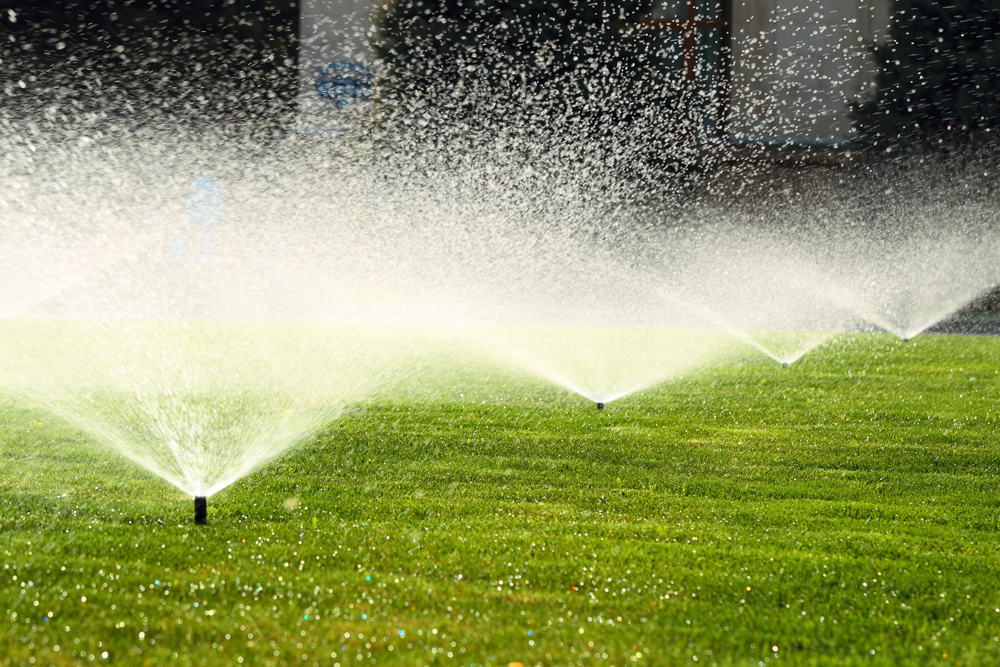 Watering your lawn can be costly